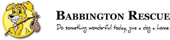 Babbington Rescue